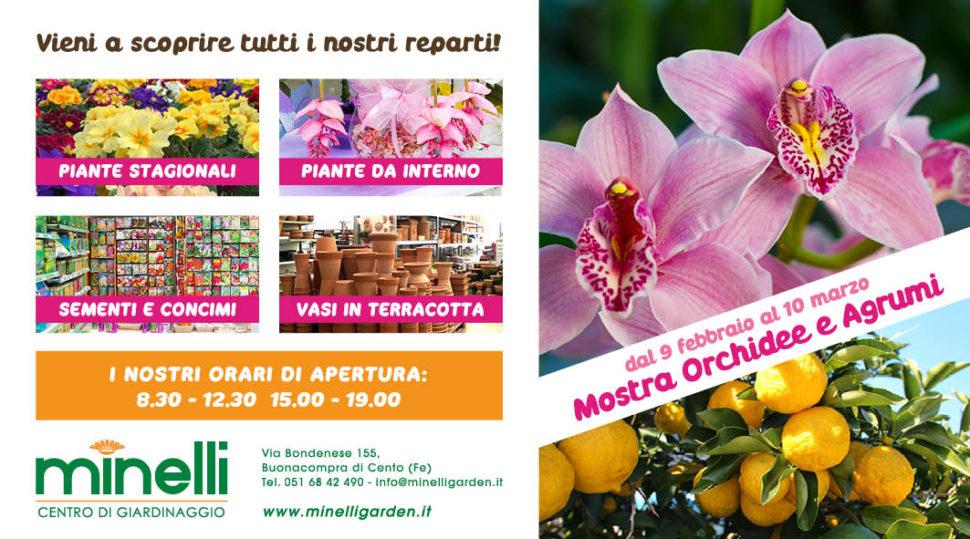 Pieghevole Mostra Orchidee Agrumi