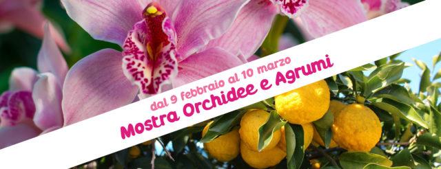 Mostra Orchidee Agrumi