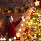 L'incontro del Natale